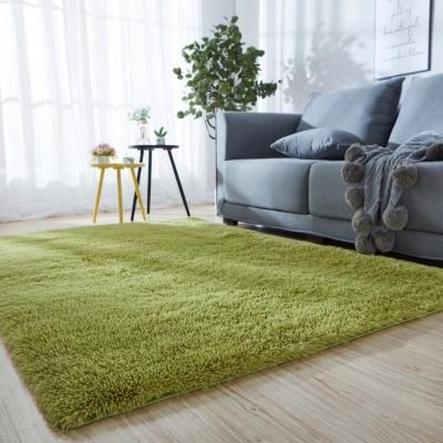 พรม พรมปูพื้น ขนนิ่ม พรมนุ่ม พรมห้องนอน สีเขียว ขนาด80*120 CM